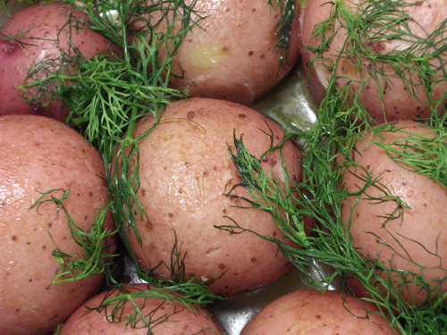 Dilly red potatoes, hot out of the oven